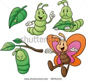 Let's learn the life cycle of the butterfly