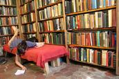 utopie socialiste se faisant passer pour une librairie
