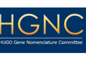 HUGO Gene Nomenclature Committee