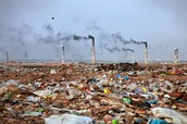 trash causes pollution