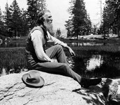 What did John Muir do to help Yosemite National Park?