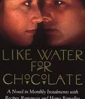 Su primo libro (1991)