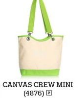 Canvas Crew Mini in Natural with Green