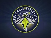 Attend a FireFlies Baseball Game