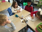 Friction and Forces - 2nd grade
