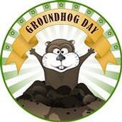 Groundhog's Shadow Challenge