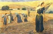 רות מוחלת על כבודה ויוצאת ללקט בשדה בעז לפי עצת נעמי