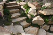 Rock Walls & Stairs