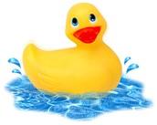 Cheer Ducks!