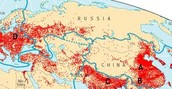 Russia's population density map