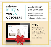 All Stylist Business Blitz