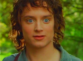 Frodo Baggins as Elijah Wood