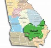 Magnolia Midlands