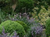 Solbacken, heter den plantering som Torsten skapade som Mästarrabatten 2009