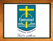 EMMANUEL CATHOLIC COLLEGE ENROLMENTS (2017—2019)