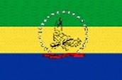 Bandera del estado Falcón