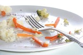 Stop wasting food and keep your plate clean!