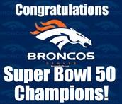 Superbowl 50 Predictions!