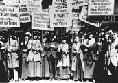 A group of women fighting for women.