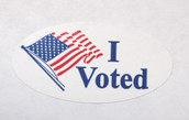 Voters elect law makers to represent