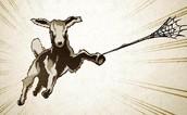 Spider Goat