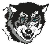 Let's go t-wolves! Let's go!