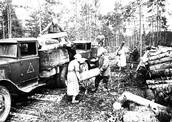 Заготовка дров для оборонительных укреплений. 1942 г.