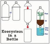 Bottle Biosphere