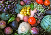 Get a Weekly Box of Certified Organic Produce for the Same Price as Conventional Produce