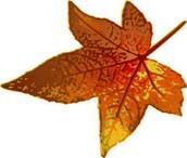 Fall Showcase on Oct. 29