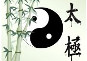 Turtle Qigong Weekly Classes