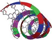 Spartan DNA model