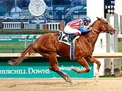 HBD's Top Six Kentucky Derby Horses