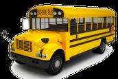 Bus Evacuation Day
