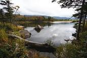 The Shiretoko Peninsula
