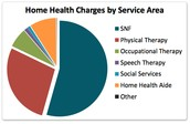 Who work  in home  health agencies