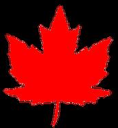 Canadian Demographics 2060