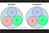 Protrons and neutrons