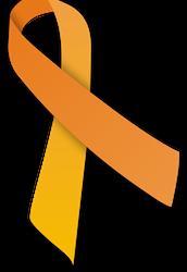 Orange Ribbon Campaign