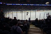 The view from our seats at the Wolves game!