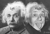 What are you left or right brain?