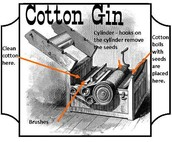 Parts Of The Cotton Gin