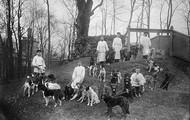 Pavlov's honden worden uitgelaten 1904