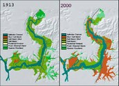 What are The Waikato region's estuaries are coming under increasing pressure from