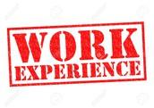 Job and Internship Experiences