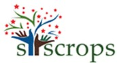 We Are Team Syscrops