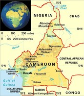 About Cameroon
