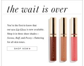The wait is over! I am so excited to introduce our new line of Lip Gloss!!