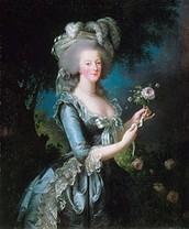 Qui est Marie Antoinette?