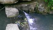 Dogwood Canyon Nature Park